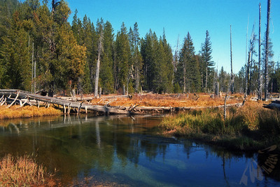 Little Deschutes River 2